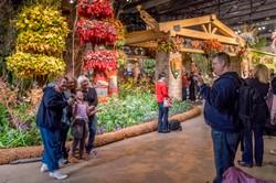 Philadelphia Flower Show 2016