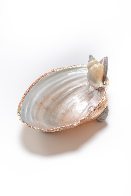 Medium Shell - multi bronze