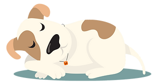 Sleaping dog.png