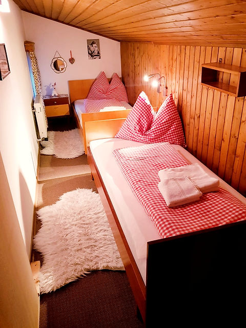 The Loft Apt 1 twin room_edited.jpg