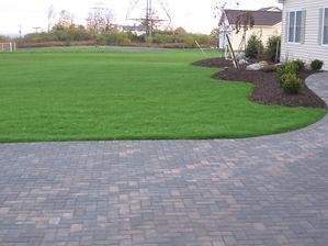 Lawns Hydro Seed