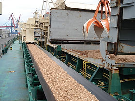 woodchip conveyor.jpg