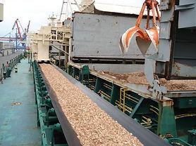 woodchip conveyor.jpg
