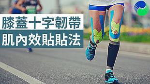 膝前後十字韌帶肌內效貼貼扎【肌貼】