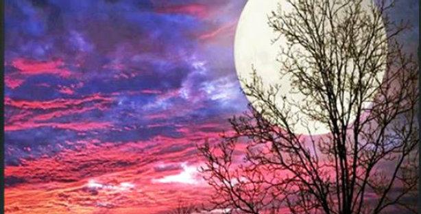 Hunter's Moon at Sunset: Printed Cross Stitch Kit 11CT 36x46cm