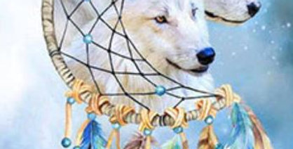 Dreamcatcher Wolves: Printed Cross Stitch Kit 11CT