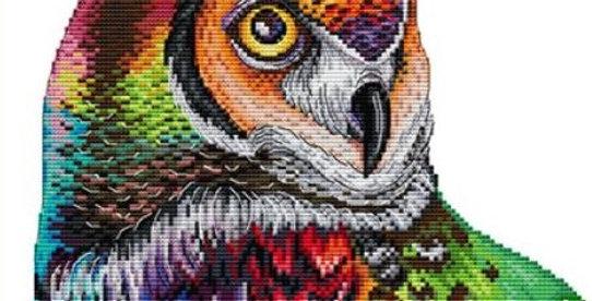 Joy Sunday: Rainbow Owl