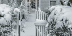 A Snowy Garden Gate