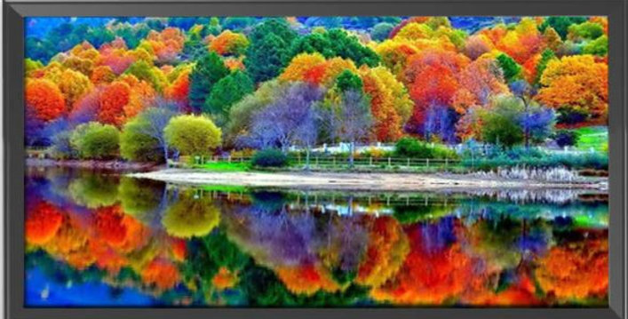 Autumnal Forest in Reflection - Cross Stitch Kit 14 printed CT 40 x 85cm
