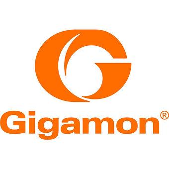 gigamon logo.jpg