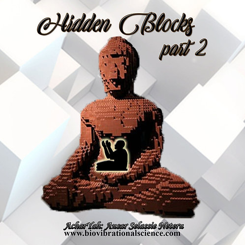 Hidden Blocks Part 2