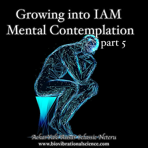 Growing into IAM Part 5 MP3