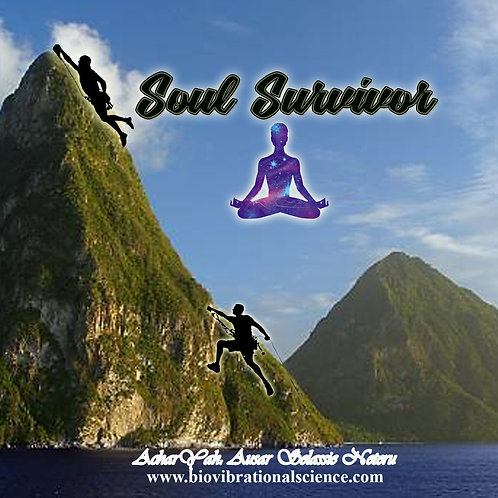Soul Survivor MP3