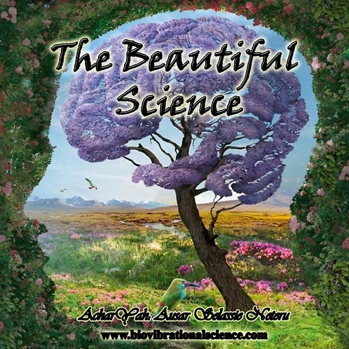 Beautiful Science 2/11/18
