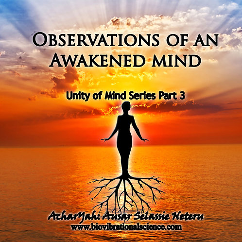 Observations of an Awakened Mind UofM Part 3 MP3