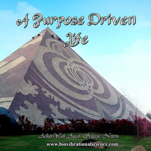 A Purpose Driven Life MP3