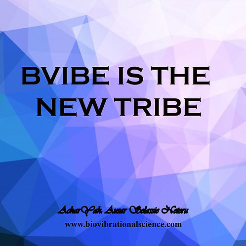 BVIBE is the NEW Tribe MP3