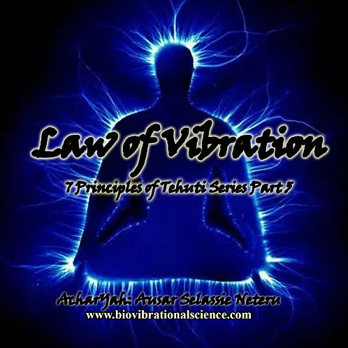 Law of Vibration MP3