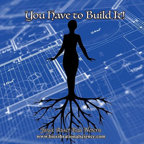 You Have to Build It MP3 Jaya