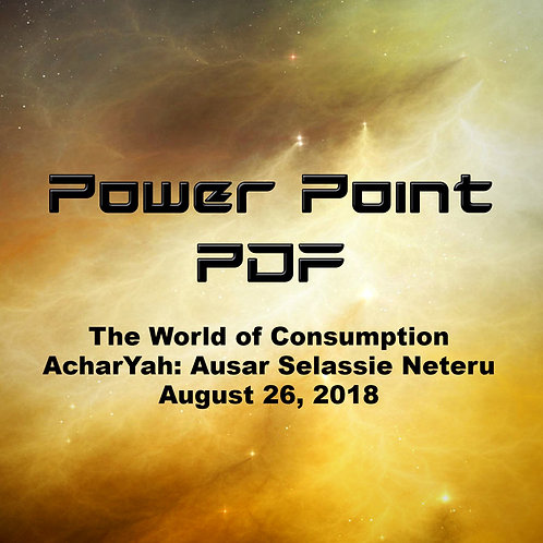 The World of Consumption Power Point PDF