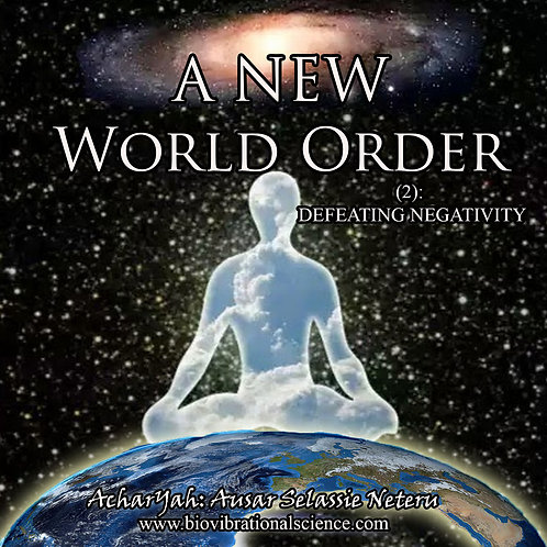 New World Order Part 2: Defeating Negativity MP3