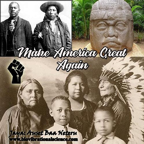 Make America Great Again Jana MP3