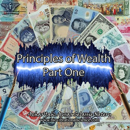 Principles of Wealth Part One MP3