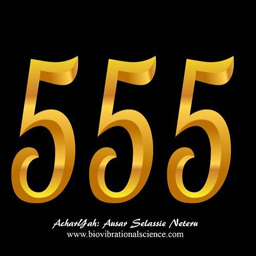 555 Jnana MP3