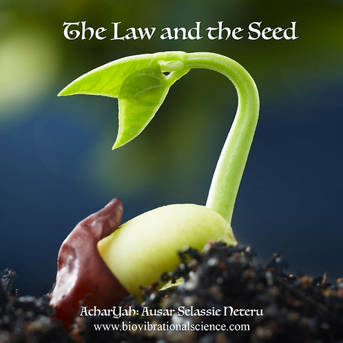 The Law and the Seed