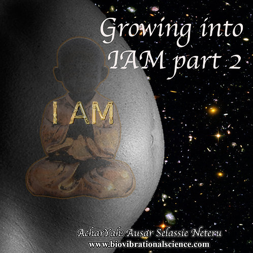 Growing into IAM Part Two MP3