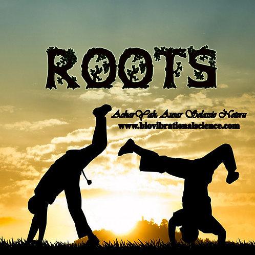 Roots Jnana