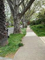 Sac street photo 5.jpg