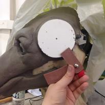 Mask Sculpting