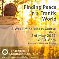 2021 q2 Finding Peace Publisher advert -