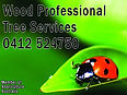 wood professional tree services netball.