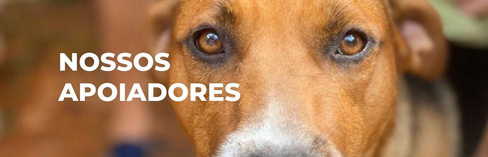 Banner_site_Nossos%20apoiadores_edited.j