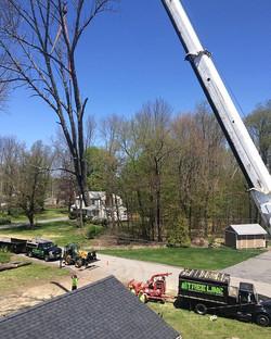 A big crane job in Atkinson, NH! #treelinenh #treeremoval #treework #atkinsonnh #southernnh #cranejo