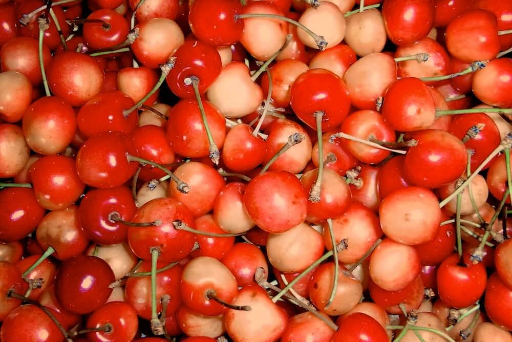 organic-cherries-Agrit.-Montelovesco