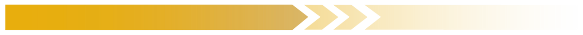 Barra-web-diplomado-amarillo.png