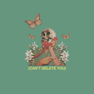 Can't Delete You