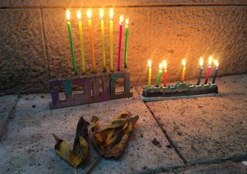 חנוכיות בגן שובך, ירושלים. צילום: אוהד מרגליות- לזר
