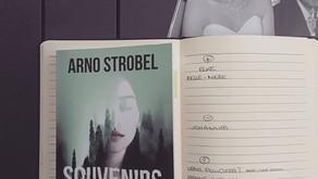 Souvenirs effacés - Arno Strobel