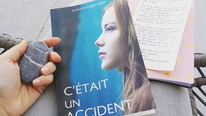C'était un accident - Isabelle Lagarrigue
