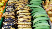 Can't Complain About Plantain