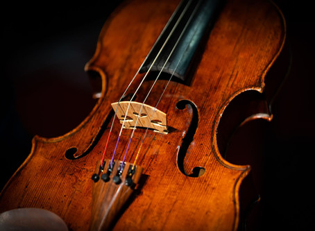 Concerts to Celebrate Amati Viola's 400 Years
