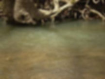 Blue Springs Creek near Bourbon, Missouri