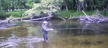 Fishing the Pere Marquette of Michigan