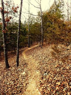 Cave Spring Trail Split