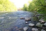 Housatonic River Fishing