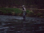 Current River Trout Fishing